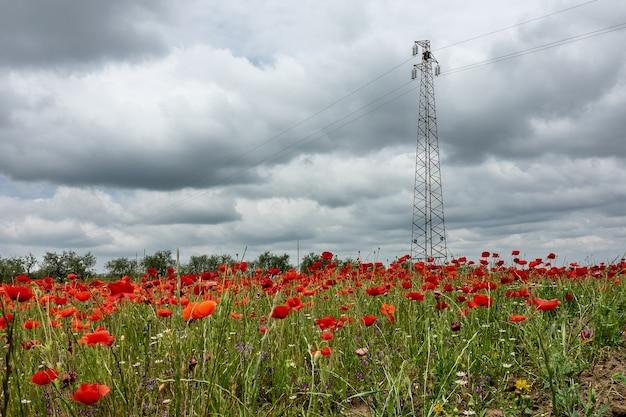 Weitwinkelaufnahme eines stromübertragungsturms auf einem feld voller blumen unter einem bewölkten himmel Kostenlose Fotos
