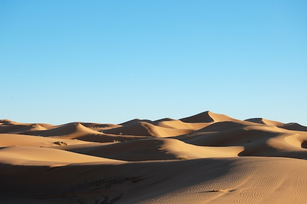 Weitwinkelaufnahme von sanddünen in einer wüste bei tag Kostenlose Fotos