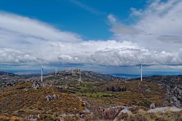 Weitwinkelaufnahme von weißen windfächern auf einer großen wiese Kostenlose Fotos