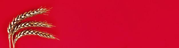 Weizenähren gemalt mit goldfarbe auf einem roten hintergrund. top twist. kopieren sie platz. goldener weizen. Premium Fotos