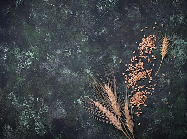 Weizenkörner und ährchen auf rostigem hintergrund. Premium Fotos