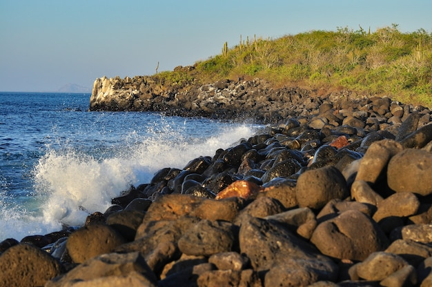 Wellen auf den felsen in galapagos Premium Fotos