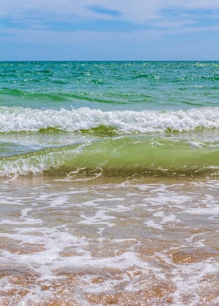 Wellen. küste. wellen im meer Premium Fotos