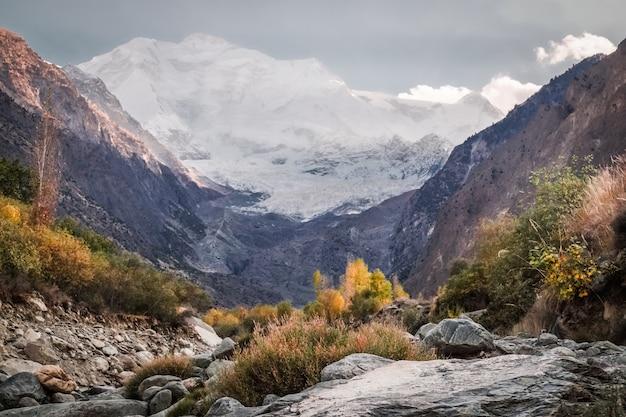 Wildnisgebiet mit schneebedecktem rakaposhi-berg. Premium Fotos