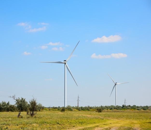 Windmühlen auf dem gebiet Premium Fotos
