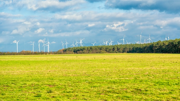 Windturbinenfeld Premium Fotos