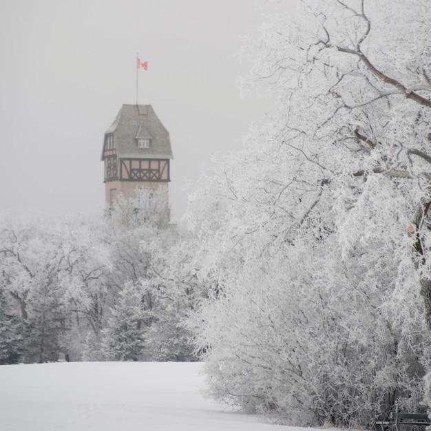 Winnipeg, winterfrost Premium Fotos