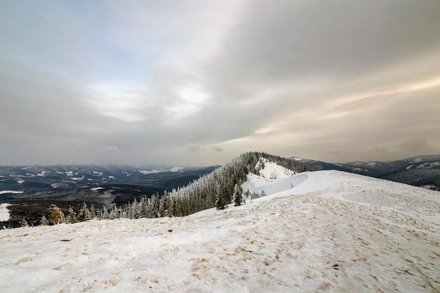 Winterberglandschaft, schneebedeckte spitzen und gezierte bäume unter bewölktem himmel am kalten wintertag. Premium Fotos