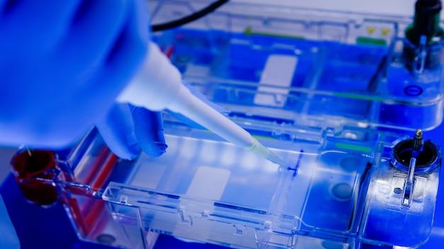 Wissenschaftler, der den biologischen prozess der gelelektrophorese im rahmen der forschung durchführt Kostenlose Fotos