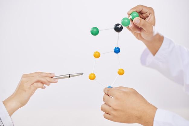 Wissenschaftler mit molekularem modell Kostenlose Fotos