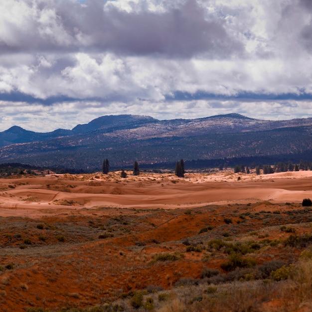 Wolken über einer wüste, korallenroter rosa sanddüne-nationalpark, utah, usa Premium Fotos