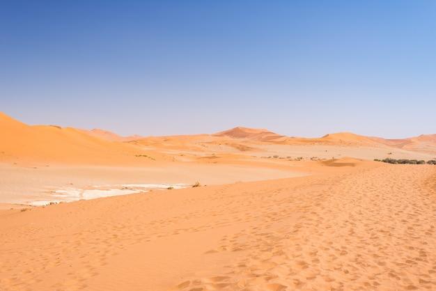 Wüste sanddünen namib, im wunderbaren nationalpark namib naukluft, namibia, afrika. Premium Fotos