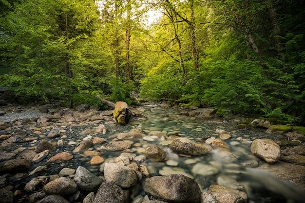 Wunderschöne landschaft in toronto Premium Fotos