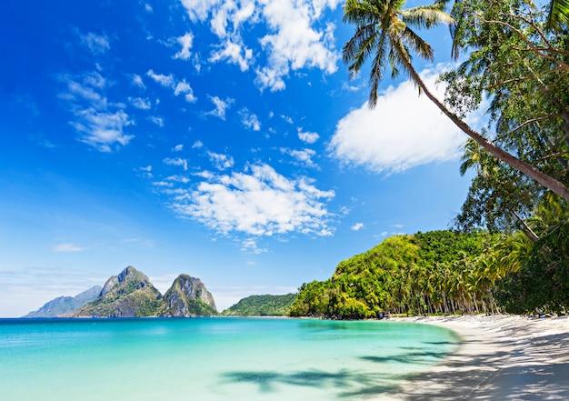 Wunderschöner strand Premium Fotos