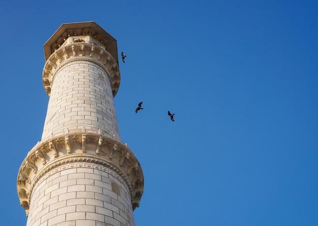 Wurmansicht des turms mit klarem blauem himmel und fliegenden vögeln Premium Fotos