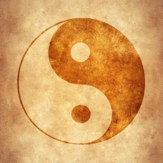 yin yang meditation download der kostenlosen fotos. Black Bedroom Furniture Sets. Home Design Ideas