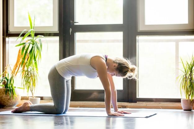 Yoga zu Hause: Katze Pose | Download der kostenlosen Fotos