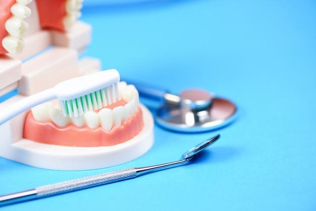 Zahnpflegekonzept - zahnarztwerkzeuge mit gebisszahnheilkundeinstrumenten und zahnpflege- und -ausrüstungsüberprüfung mit zahnmodell und mundspiegelmundgesundheit Premium Fotos