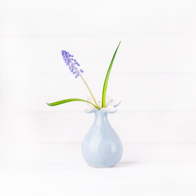 Zarte blaue traubenhyazinthe in einer grauen blumenvase Premium Fotos