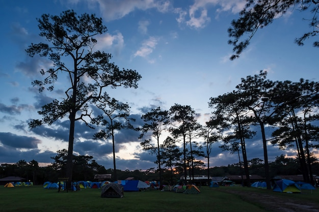 Zelt im nationalpark. Premium Fotos