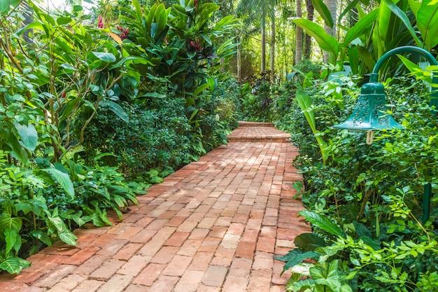 Ziegelsteinpfad in einem tropischen garten Premium Fotos