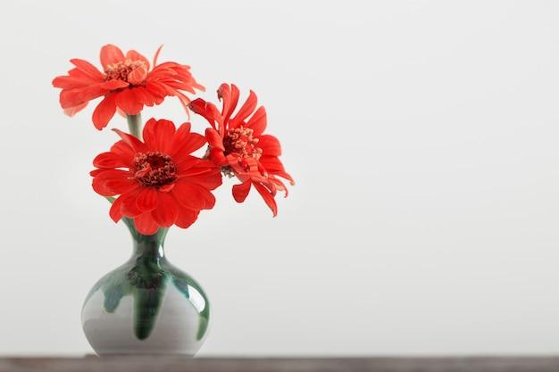 Zinnienblume in einer vase Premium Fotos