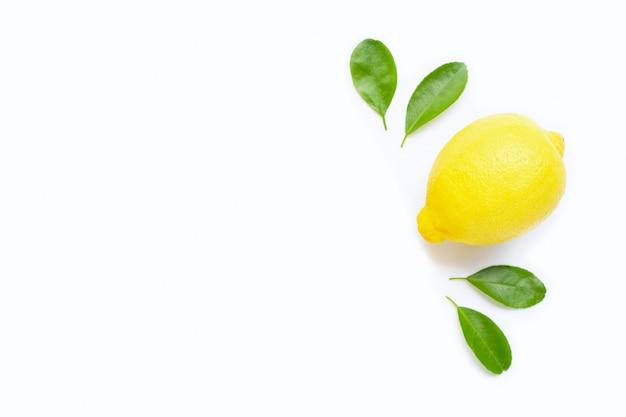 Zitrone und scheiben mit den blättern getrennt auf weiß. kopieren sie platz Premium Fotos