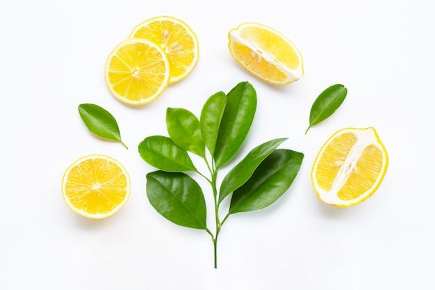 Zitronenscheiben mit den blättern lokalisiert Premium Fotos