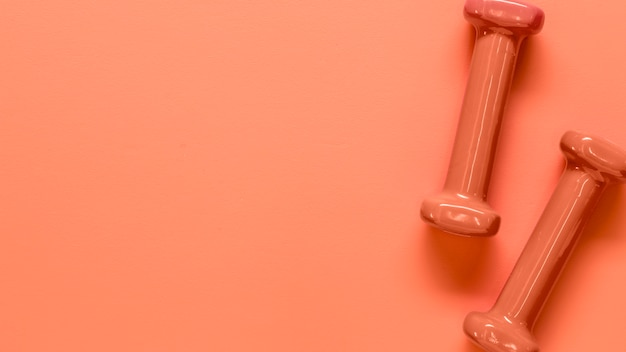 Zusammensetzung von paaren rosa leichten dummköpfen Kostenlose Fotos