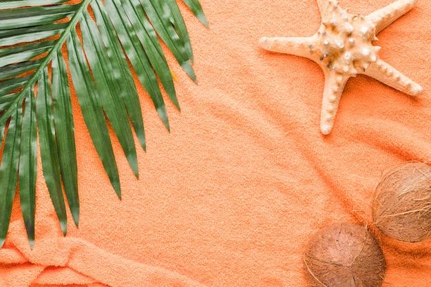 Zusammensetzung von starfishkokosnüssen und -blatt Kostenlose Fotos