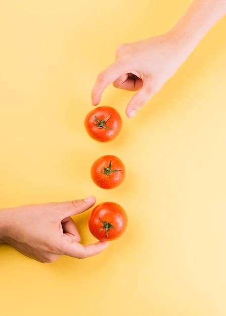 Zwei leute, die saftige rote tomaten auf gelbem hintergrund aufheben Kostenlose Fotos