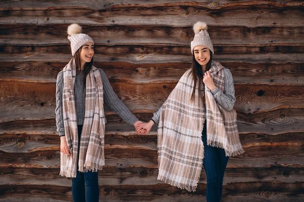 Zwei mädchenzwillinge zusammen im winterpark Kostenlose Fotos