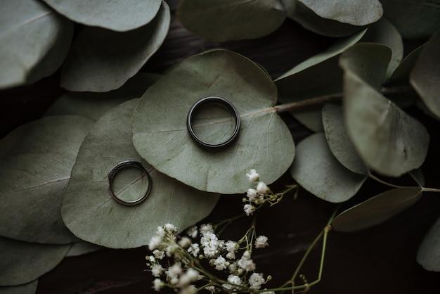Zwei ringe auf herzförmigen grünen blättern Kostenlose Fotos
