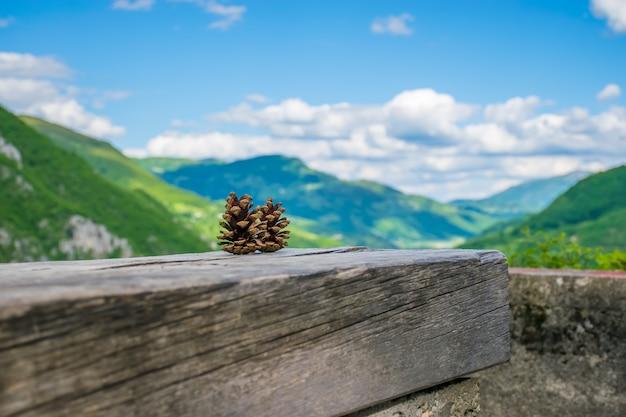 Zwei tannenzapfen liegen auf einem baumstamm zwischen den bergen. Premium Fotos