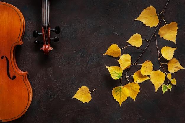 Zwei violinen und birkenzweig mit gelbem herbstlaub. Premium Fotos