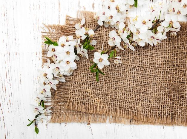Zweig der kirschblüten und des leinwandhintergrundes Premium Fotos
