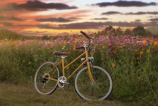 Zyklusweinlese mit blumengarten Premium Fotos