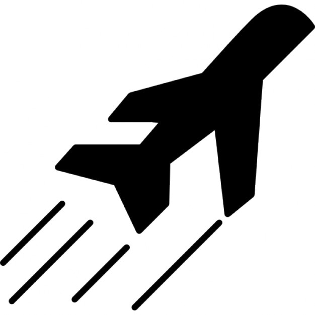 Airplane side view in flight Icons : Free Download