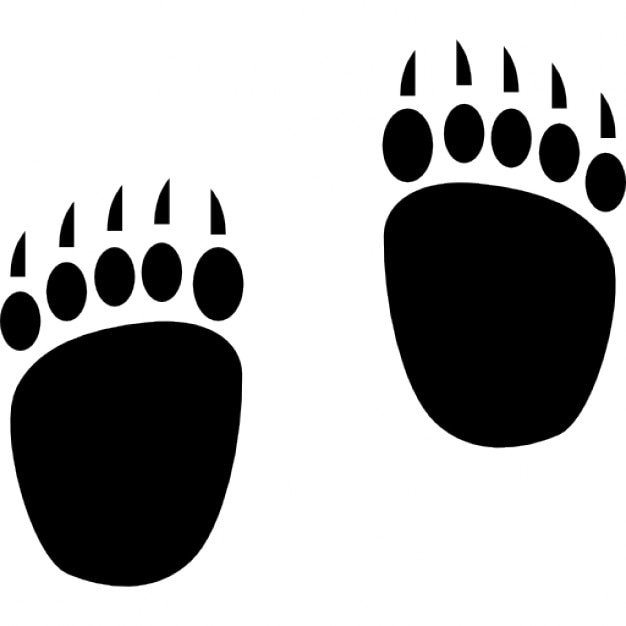 bear footprints template bear footprints icons free download