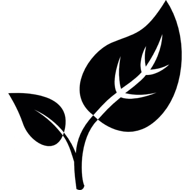 Leaves Icon Vector Art & Graphics | freevector.com