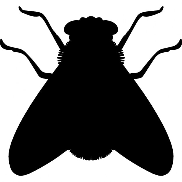 Fly Shape Free Icon