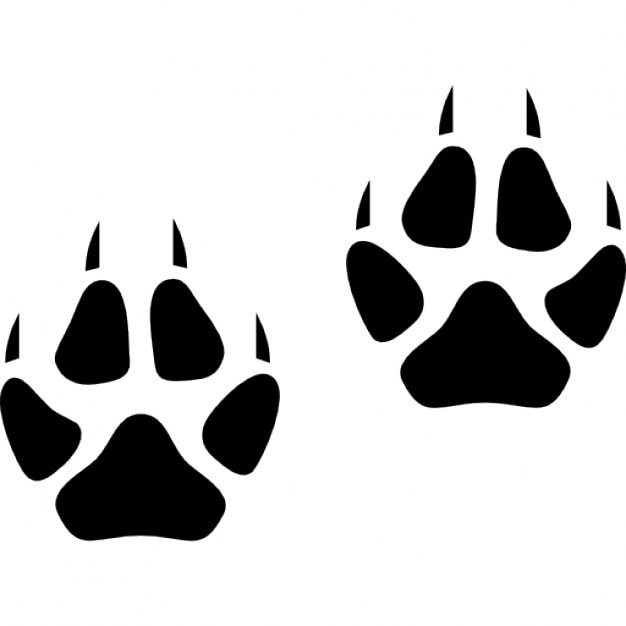 fox footprints icons free download coyote clip art images coyote clipart image