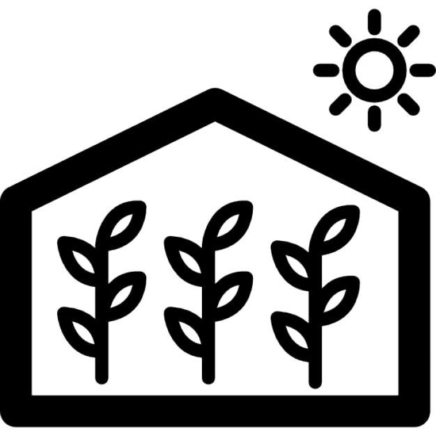 greenhouse_318 33382