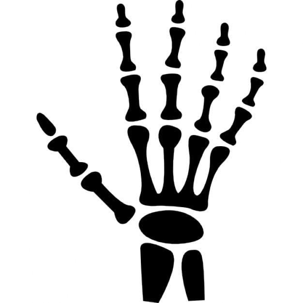 Human hand bones Icons | Free Download