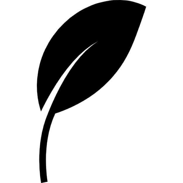 Leaf Black Shape Eco Symbol Icons Free Download