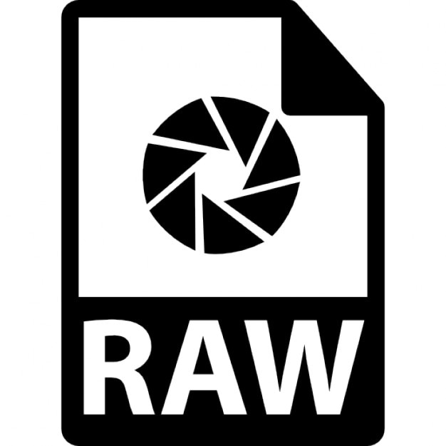 What is a RAW File