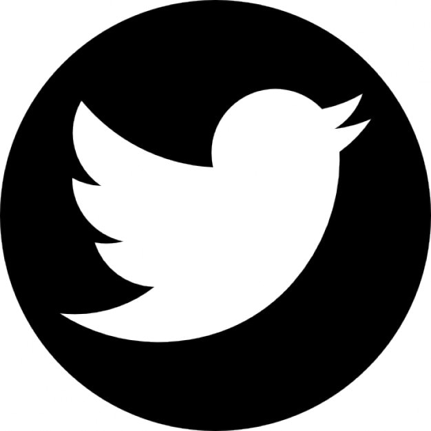 Image result for twitter ]icon