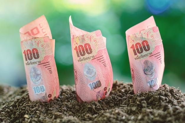 100バーツタイの通貨は土壌から成長する Premium写真