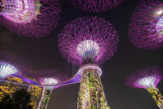 シンガポールのベイバイガーデンズのスーパーツリーグローブの夜景。シンガポール中心部のマリーナ貯水池に隣接する101ヘクタールの埋立地にまたがる 無料写真