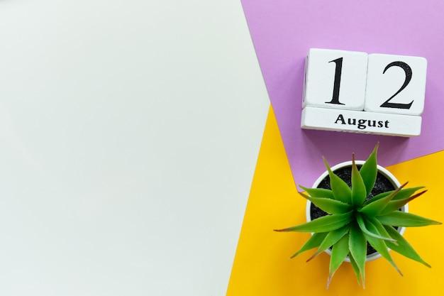 Концепция календаря месяца двенадцатого августа двенадцатый день на деревянных блоках с копией пространства Premium Фотографии